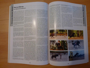 Veni at liberty im Jahrbuch Welsh 2015
